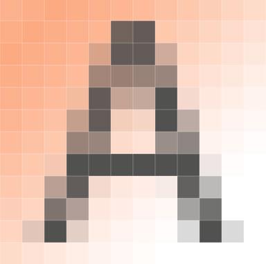 Exemple image 16x16 (256 pixels)