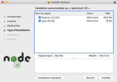 Options d'installation de Node.js