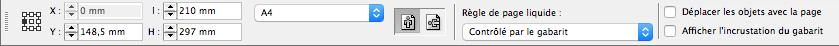 Barre d'options pour l'outil page